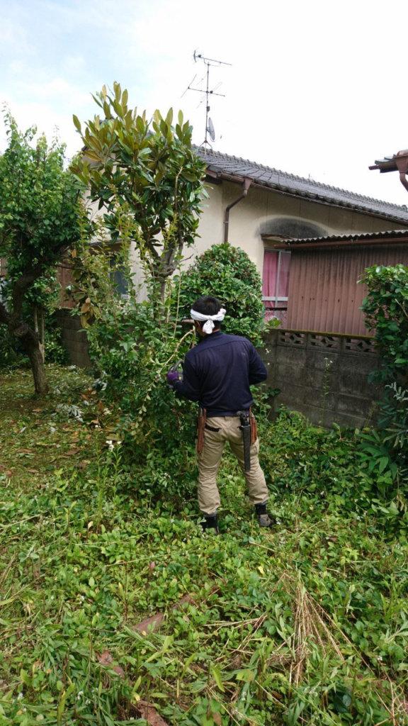 草刈り機を使用しての除草作業の様子
