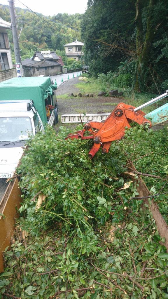 重機で枝葉を3tダンプへ集材している様子