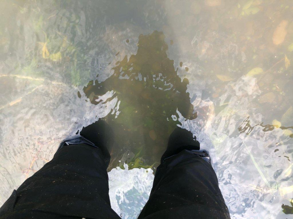 この時期ともなるとさすがに水温は低全て綺麗に引き上げる事が出来ました。