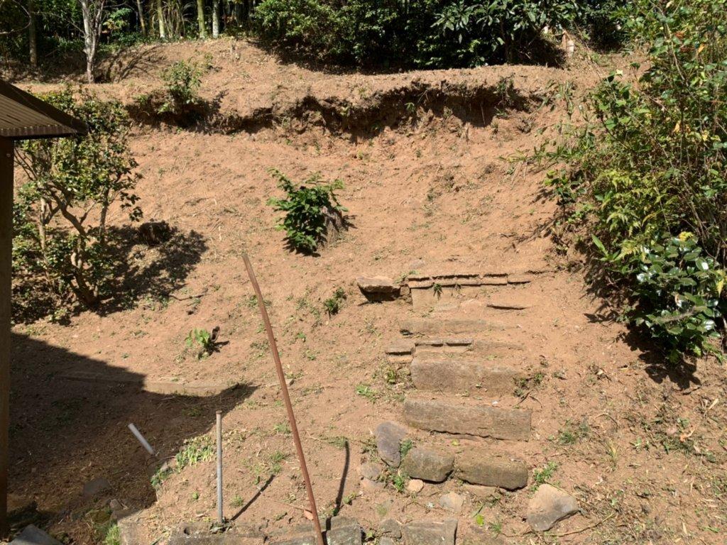 作業後。雑草はほとんど見えなくなるほど綺麗に除草を行いました。これが山猿クオリティ。